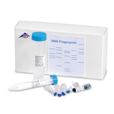 Set d'expêrimentation « DNA Fingerprint », 1013458 [W19937], Kits Electrophorèse