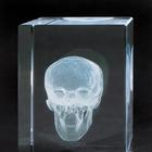 MAA20G: MEDart™ Glass Block Skull