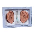N15: 3B Ear set, one left and right ear