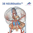 S0290: 3B NEUROtables™ in French