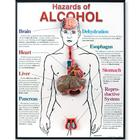 Hazards of Alcohol 3D Framed Chart, 1020787 [W43165], Prévention drogues et alcools