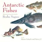 W56503: Antarctic Fishes